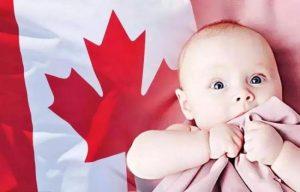 详解2019加拿大福利调整:TFSA 牛奶金上调- 新闻中心- 温哥华港湾